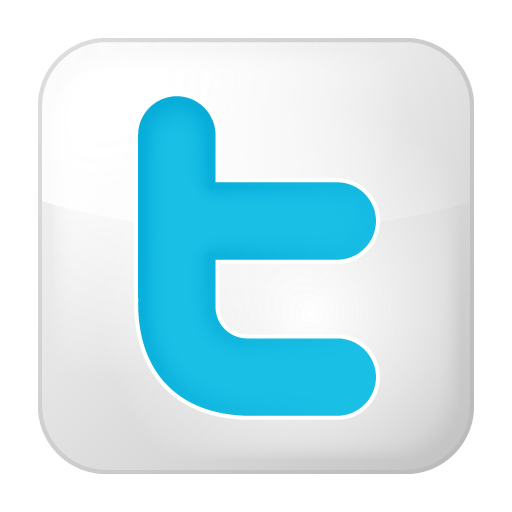 Box, Social, Twitter, White Icon