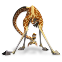 Madagascar, Melman Icon