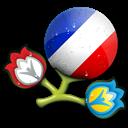 Euro, France Icon