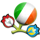 Euro, Ireland, Of, Republic Icon