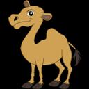 Camel, Icon Icon