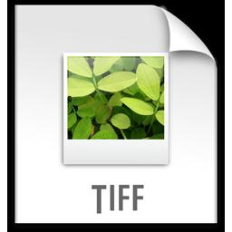 File, Tiff, z Icon