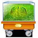 Administrator, Brain Icon