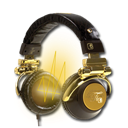 Audacity, Gold Icon