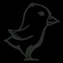 Bird, Detailed, Twitter Icon