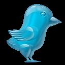 Bird, Glass, Twitter Icon
