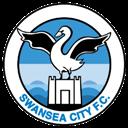 City, Swansea Icon