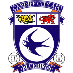 Cardiff City Icon Download Free Icons