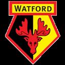 Fc, Watford Icon