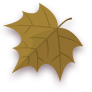 Autom, Leaf Icon