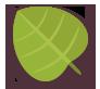 Green, Leaf Icon