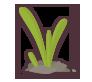Plants, Spring Icon