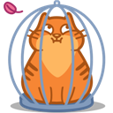 Cage, Cat Icon
