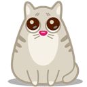 Cat, Eyes Icon