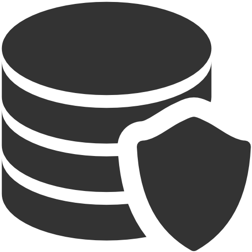 Data, Protection Icon