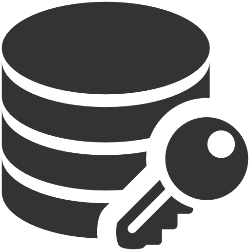 Data, Encryption Icon