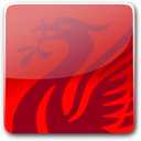 Button, Liverbird Icon