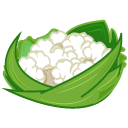 Cauliflower, Icon Icon