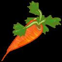 Carrot, Icon Icon