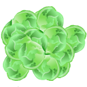 Brussels, Icon, Sprout Icon
