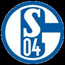 Schalke Icon