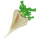 Icon, Raphanus Icon