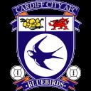 Cardiff, City Icon