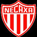 Necaxa Icon