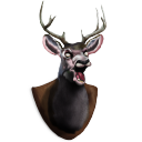 Deer, Head Icon