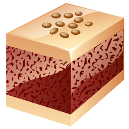 Cake, Nuts Icon