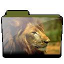 Folder, Lion Icon