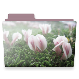 Flowers, Folder Icon