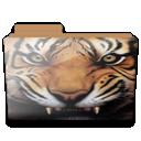 Folder, Tiger Icon