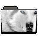 Folder, Wolf Icon