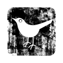 Bird, Twitter Icon