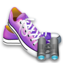 Search, Shoes Icon