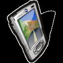 Palm Icon