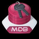 Access, Mdb Icon