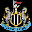 Newcastle, United Icon