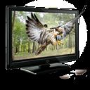3d, Eagle Icon