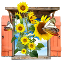 Flowers, Sunflowers, Window Icon