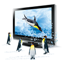 3d, Penguins Icon
