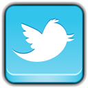 Network, Social, Twitter Icon