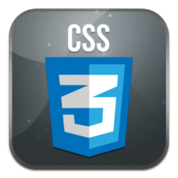 Css, Px Icon