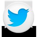 Icon, Twitter Icon
