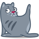 Cat, Clean Icon