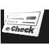 Echeck Icon