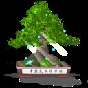 Bonsai, Final Icon
