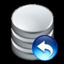 Data, Undo Icon