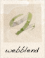 Webblend Icon